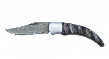 Corsican shepherd's knife - Buffalo horn handle and damascus blade