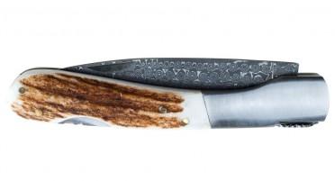 Couteau Vendetta Corse Hors Série - Bois de Cerf et lame Damas